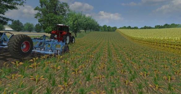 maize-in-rows-v-2.0lfxnv
